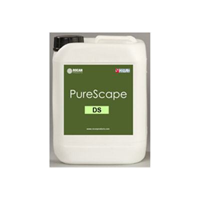 Jafep-Middle-East-rocan-pure-scape-DS